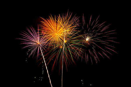 Photo for Beautiful fireworks with a black background: celebration with fireworks - Royalty Free Image