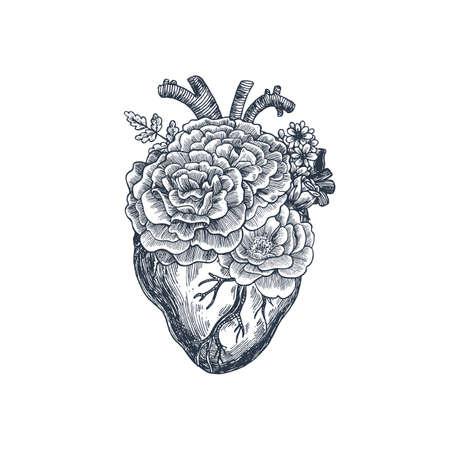 Ilustración de Tattoo anatomy vintage illustration; Floral romantic anatomical heart illustration - Imagen libre de derechos