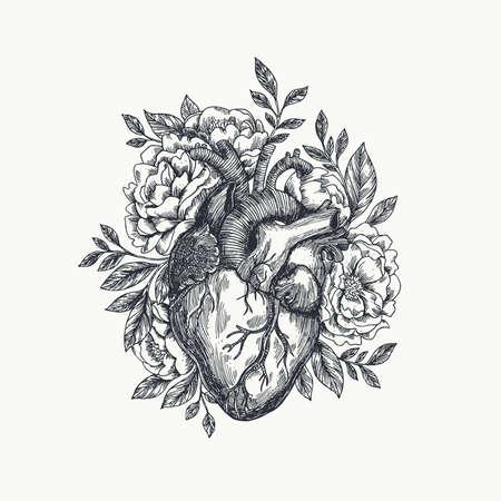 Illustration pour Valentines day card. Anatomical heart with flowers. Vector illustration. - image libre de droit