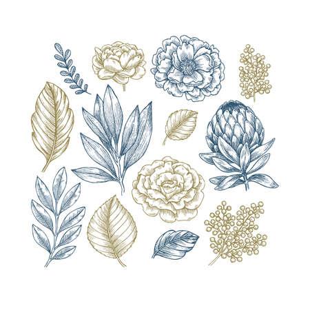 Hand drawn plant and flower collection. Vintage engraved flower set. Vector illustration