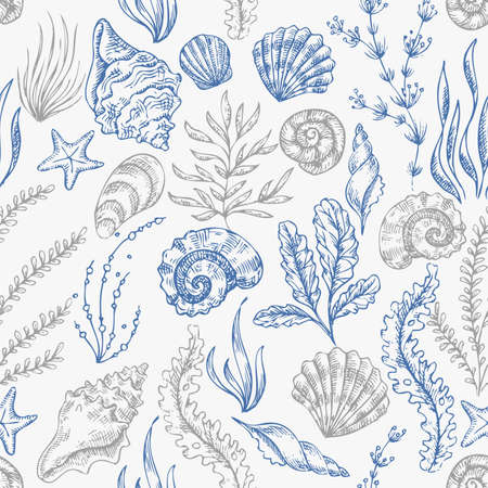 Ilustración de Sea shells seamless pattern. Vintage seashell vector illustration.  Vector illustration - Imagen libre de derechos