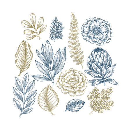 Hand drawn plant and flower collection. Vintage engraved flower set. Vector illustration