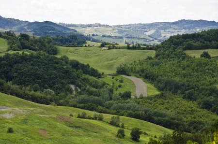 Green hills near Sassuolo, Province of Modena, Region of Emilia-Romagna - Northern Italy - Europe