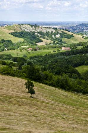 Summer season - view from the hill, near Sassuolo, Province of Modena, Region of Emilia-Romagna - Italy - Europe