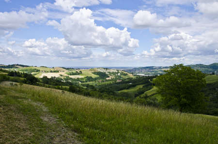 Rural landscape - Summer season - View from the hill, near Sassuolo, Province of Modena, Region of Emilia-Romagna - Northern Italy - Europe