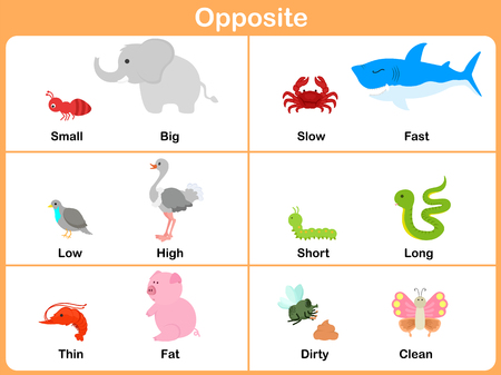 Opposite with animals for preschool - Worksheet for education