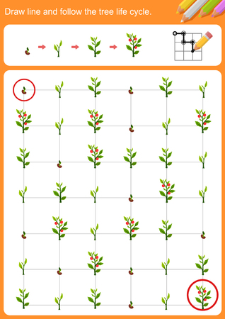 Illustration pour Draw line and follow the tree life cycle.  Worksheet for education. - image libre de droit