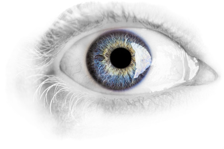 Macro blue eye with lots of details using studio lights isolated on white