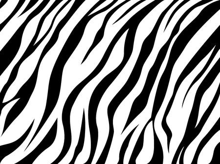 skin zebra