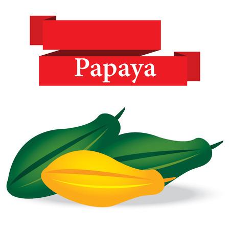 fresh papaya on white background vector