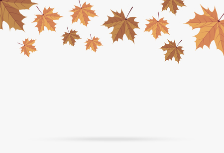 Ilustración de autumn brown maple leaf fall isolated on white background - Imagen libre de derechos