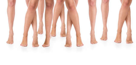 Seven  pairs female legs on a floor.