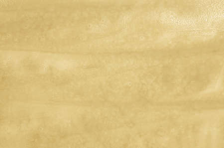 abstract beige painted background texture