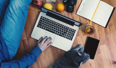 Friendly workspace: man working on the floor with his grey cat.