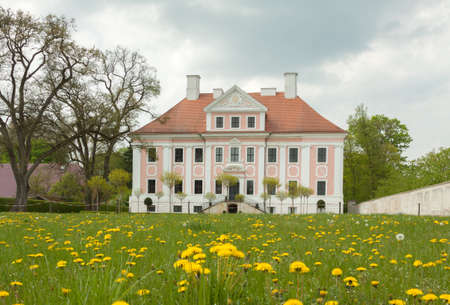 Schloss Gro? Rietz with dandelion in the foreground