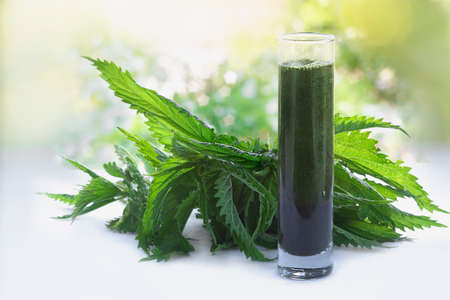 Photo pour Green raw nettles and a smoothie made of nettles juice in  a glass - image libre de droit