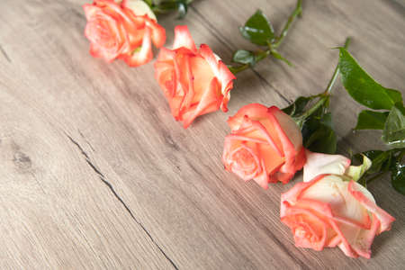 Photo for pink roses on the woden table background - Royalty Free Image