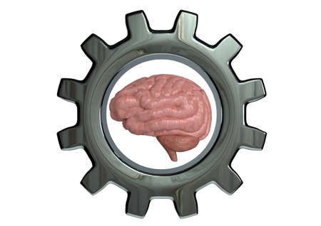 Mindset Training concept of high mental performance, cognitive and brain capacity development. 3D rendering