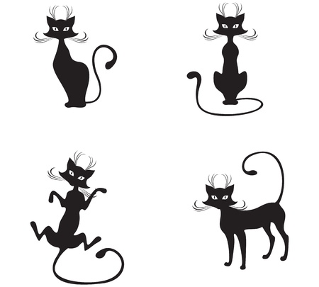 The silhouette of black graceful cats