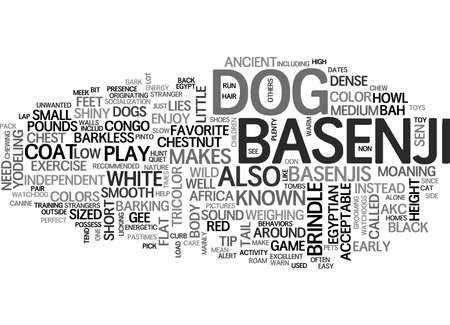 BASENJI EGYPTIAN DOG TEXT WORD CLOUD CONCEPT: Royalty-free