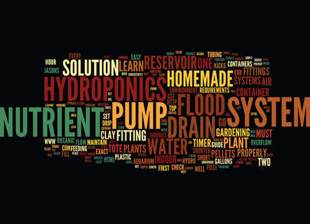 THE EASIEST HOMEMADE HYDROPONICS SYSTEM Text Background Word Cloud Concept