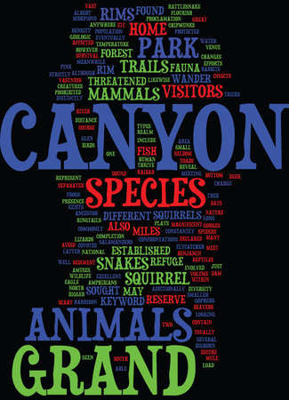 GRAND CANYON ANIMALS Text Background Word Cloud Concept