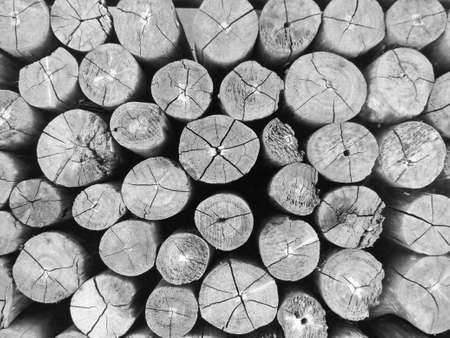 Photo for Close up image of grunge old round wooden plank texture, abstract textures for background in black and white monochrome - Royalty Free Image