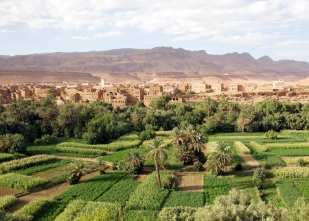 Morocco landscape: river valley, wadi, cultivations with traditional village and Anti Atlas Mountains in the background