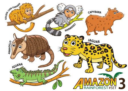 Illustration pour Set of Cute cartoon Animals and birds in the Amazon areas of South America isolated on white background. golden lion tamarin, marmoset, capybara, armadillo, jaguar, iguana, lizard - image libre de droit