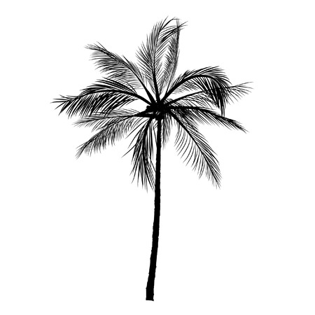 Illustration pour vector of palm tree silhouette icons on white background, coconut tree flat icon for vacation apps and websites. - image libre de droit