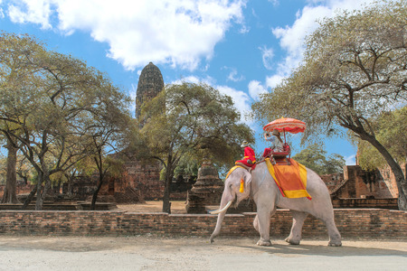 Tourist on elephant sightseeing in Ayutthaya Historical Park, Ayutthaya, Thailand