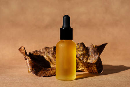 Photo for Dropper oil bottle with black cap, craft paper background, dry leaves. Horizontal monochrome brown mockup. Autumn poster. Natural organic cosmetic, lotion, essence. Biophilia, terracotta brick color - Royalty Free Image