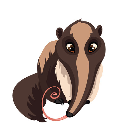 Illustration pour Anteater isolated on white background. Giant anteater in a cartoon style. Vector illustration. - image libre de droit