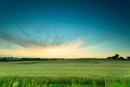 Photo for Evening landscape. Beautiful sunset or sunrise over green summer field meadow with dramatic red sky, - Royalty Free Image