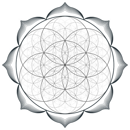 Illustration pour vector contour monochrome design mandala sacred geometry illustration seed flower of life lotus isolated white background - image libre de droit