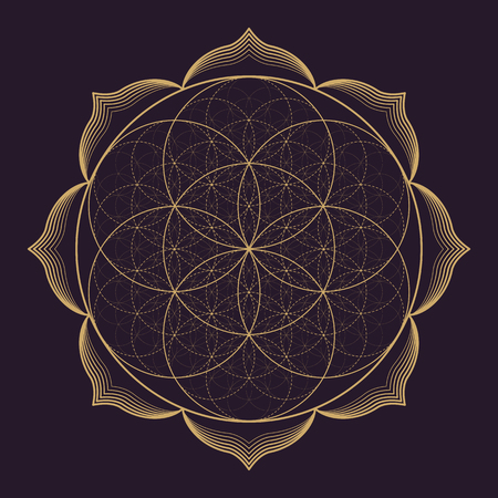 Illustration pour vector gold monochrome design abstract mandala sacred geometry illustration Seed Flower of life lotus isolated dark brown background - image libre de droit