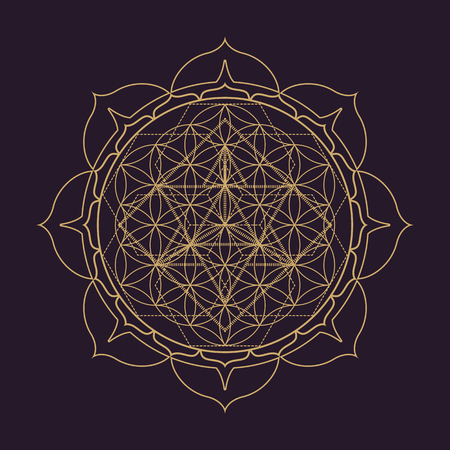 Illustration pour vector gold monochrome design abstract mandala sacred geometry illustration Flower of life Merkaba lotus isolated dark brown background - image libre de droit
