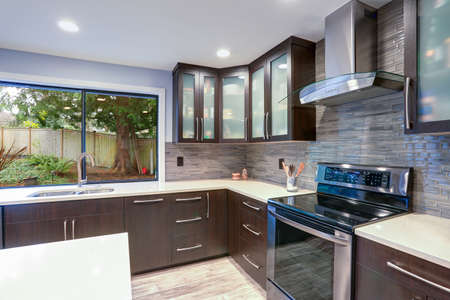 Foto de Updated contemporary kitchen room interior with white counters and dark wood cabinets fitted with luxury stainless steel appliances.  - Imagen libre de derechos