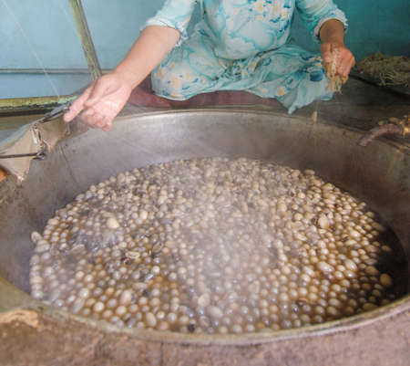 the woman untangles the cocoon of the silkworm in the hot cauldron