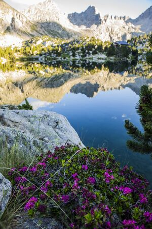 Foto de Sunset in Josep Maria Blanc refuge, Aiguestortes and Sant Maurici National Park, Spain - Imagen libre de derechos