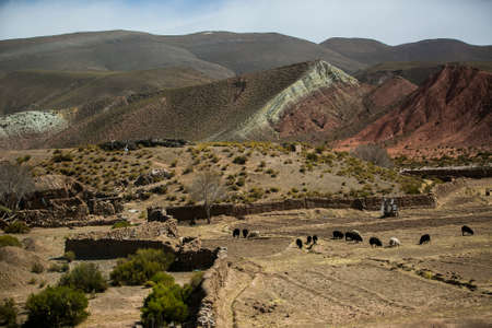 Dry landscapes in Cordillera Real, Andes, Bolivia