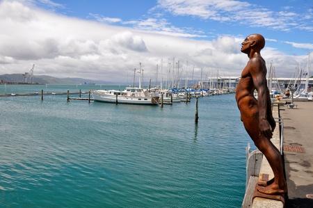 Harbour of Wellington, capital city of New Zealand.
