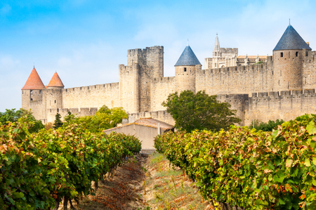 Vineyards and medieval town of Carcassonne, France