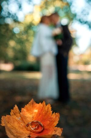 Vertical picture of wedding rings on orange leaf with faceless blurry bride and groom on background. Decoration for autumn marriage. Fall wedding decor. Wedding day
