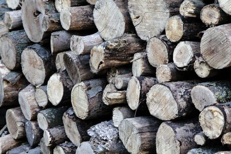 Photo for Firewood. Round logs folded for storage - Royalty Free Image
