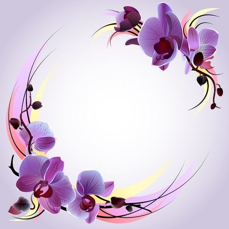 Vector greeting card with branches of violet orchids