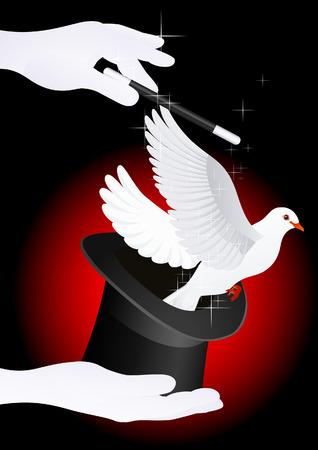 Magic Dove Illustration