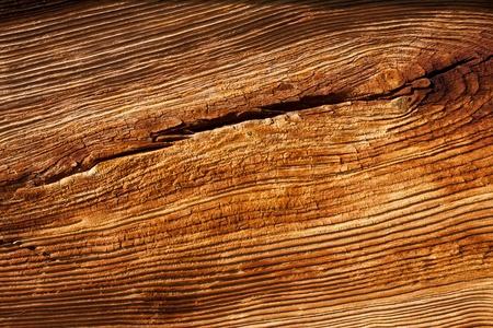 Foto de Old wood texture  - Imagen libre de derechos