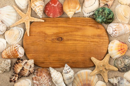 Top view. Oval wooden board lies in the sand among seashells and stars. Copy space.