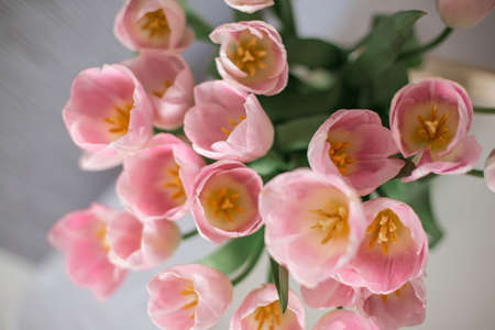 Photo pour A bouquet of spring beautiful flowers in a glass vase. Fresh Pink tulips on white background. - image libre de droit
